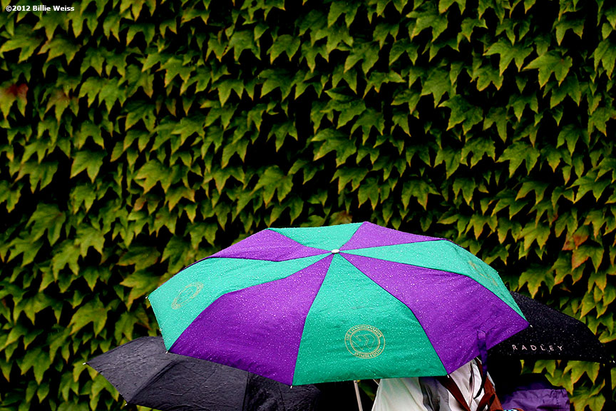 """Fans walk under umbrellas during a rain delay at the Championships Wimbledon Monday, July 2, 2012 at the All England Lawn & Tennis Club in London, England."""