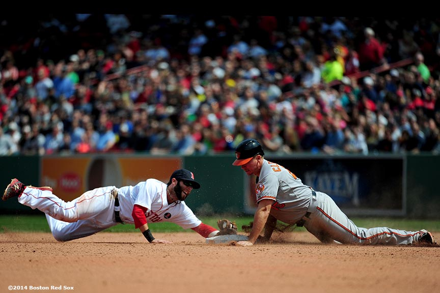 """Boston Red Sox second baseman Dustin Pedroia dives as he tags catcher Steve Clevenger at second base during the eighth inning of a game against the Baltimore Orioles at Fenway Park in Boston, Massachusetts Monday, April 21, 2014."""