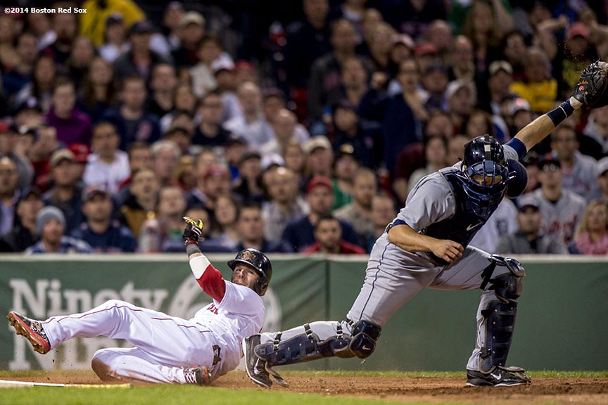 """Boston Red Sox second baseman Dustin Pedroia avoids a tag by catcher Alex Avila as he slides into home plate to score on an infield single by first baseman Mike Napoli during the fifth inning of a game against the Detroit Tigers at Fenway Park in Boston, Massachusetts Sunday, May 18, 2014."""