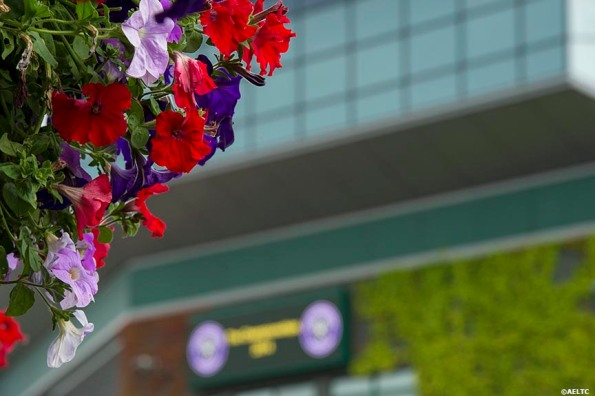 """""""Flowers hang at the All England Lawn and Tennis Club in London, England Saturday, June 28, 2014 during the 2014 Championships Wimbledon."""""""