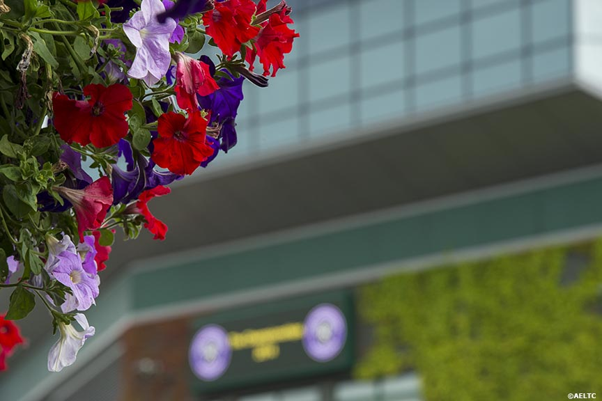 """Flowers hang at the All England Lawn and Tennis Club in London, England Saturday, June 28, 2014 during the 2014 Championships Wimbledon."""