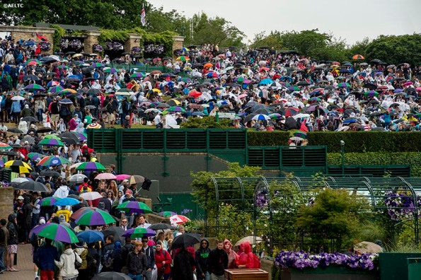 """""""Fans use umbrellas as they sit on Henman Hill during a rain delay at the All England Lawn and Tennis Club in London, England Saturday, June 28, 2014 during the 2014 Championships Wimbledon."""""""