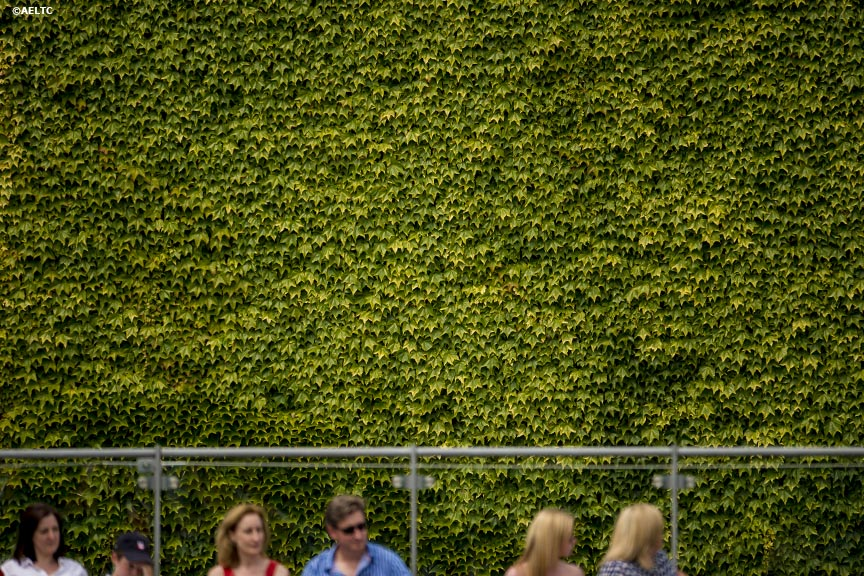 """Fans watch a match at the All England Lawn and Tennis Club in London, England Monday, June 23, 2014 during the 2014 Championships Wimbledon."""