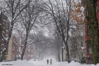 """A street is shown during snow storm Juno in Brookline, Massachusetts Tuesday, January 27, 2015."""