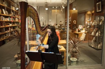 """""""A musician plays during a capital campaign fundraiser event at the Isabella Stewart Gardner Museum in Boston, Massachusetts Saturday, January 31, 2015."""""""