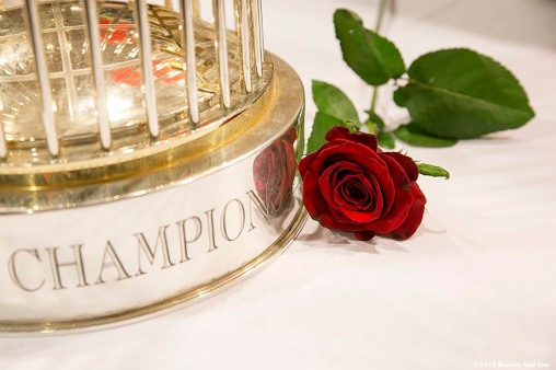 """A red rose is shown next to the 2013 Boston Red Sox World Series trophy during a Boston Red Sox Valentine's Day caravan to retirement and assisted living communities throughout greater Boston Friday, February 13, 2015."""