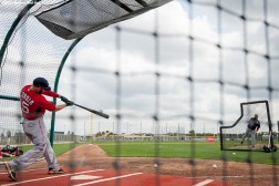 """Boston Red Sox second baseman Dustin Pedroia takes batting practice during a team workout at JetBlue Park in Fort Myers, Florida Saturday, February 28, 2015."""