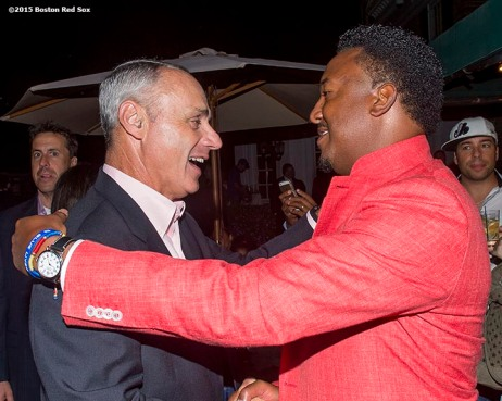 """Class of 2015 inductee Pedro Martinez talks with Major League Baseball commissioner Rob Manfred at a party at the Fenimore Art Museum during the 2015 Hall of Fame weekend at the National Baseball Hall of Fame in Cooperstown, New York Saturday, July 25, 2015."""
