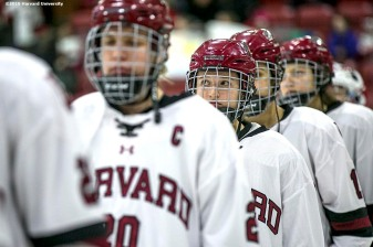 """Starting lineups are introduced during a women's hockey game between Harvard University and Yale University at Harvard University in Cambridge, Massachusetts Saturday, February 6, 2016. """