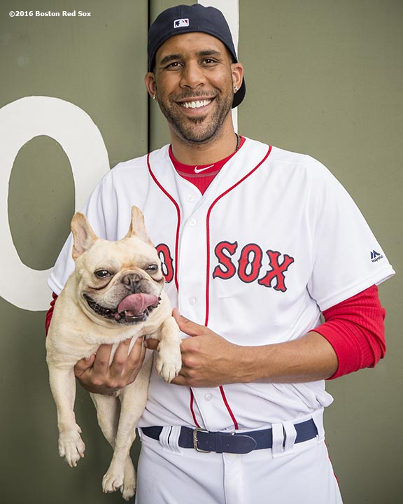 FT. MYERS, FL - FEBRUARY 22: David Price #24 of the Boston Red Sox poses for a portrait with his dog Astro on February 22, 2016 at Fenway South in Fort Myers, Florida . (Photo by Billie Weiss/Boston Red Sox/Getty Images) *** Local Caption *** David Price