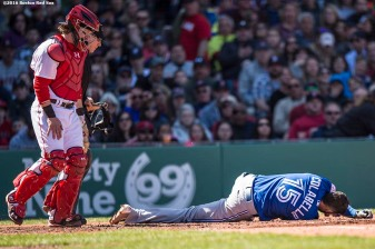 BOSTON, MA - APRIL 17: Chris Colabello #15 of the Toronto Blue Jays falls to the ground after being hit in the head with a pitch during the fourth inning of a game against the Boston Red Sox on April 17, 2016 at Fenway Park in Boston, Massachusetts . (Photo by Billie Weiss/Boston Red Sox/Getty Images) *** Local Caption *** Chris Colabello