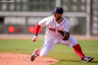 BOSTON, MA - MAY 22: Dustin Pedroia #15 of the Boston Red Sox fields a ground ball during the seventh inning of a game against the Cleveland Indians on May 22, 2016 at Fenway Park in Boston, Massachusetts. (Photo by Billie Weiss/Boston Red Sox/Getty Images) *** Local Caption *** Dustin Pedroia