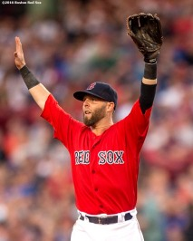 BOSTON, MA - JUNE 3: Dustin Pedroia #15 of the Boston Red Sox reacts during the third inning of a game against the Toronto Blue Jays on June 3, 2016 at Fenway Park in Boston, Massachusetts. (Photo by Billie Weiss/Boston Red Sox/Getty Images) *** Local Caption *** Dustin Pedroia