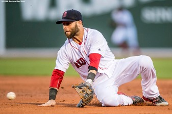 BOSTON, MA - JUNE 15: Dustin Pedroia #15 of the Boston Red Sox fields a ground ball during the second inning of a game against the Baltimore Orioles on June 15, 2016 at Fenway Park in Boston, Massachusetts. (Photo by Billie Weiss/Boston Red Sox/Getty Images) *** Local Caption *** Dustin Pedroia