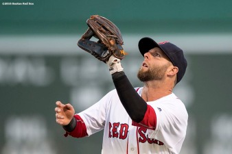 BOSTON, MA - JUNE 22: Dustin Pedroia #15 of the Boston Red Sox catches a fly ball during the first inning of a game against the Chicago White Sox on June 22, 2016 at Fenway Park in Boston, Massachusetts. (Photo by Billie Weiss/Boston Red Sox/Getty Images) *** Local Caption *** Dustin Pedroia