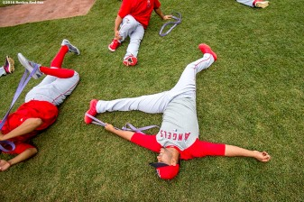BOSTON, MA - JULY 1: Members of the Los Angeles Angels of Anaheim stretch before a game against the Boston Red Sox on July1, 2016 at Fenway Park in Boston, Massachusetts. (Photo by Billie Weiss/Boston Red Sox/Getty Images) *** Local Caption ***