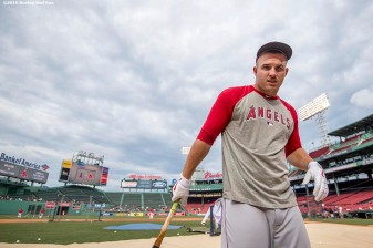 BOSTON, MA - JULY 1: Mike Trout #27 of the Los Angeles Angels of Anaheim reacts before a game against the Boston Red Sox on July1, 2016 at Fenway Park in Boston, Massachusetts. (Photo by Billie Weiss/Boston Red Sox/Getty Images) *** Local Caption *** Mike Trout