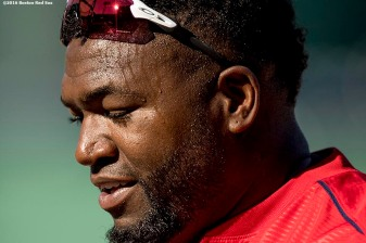 BOSTON, MA - JULY 5: David Ortiz #34 of the Boston Red Sox reacts during batting practice before a game against the Texas Rangers on July 5, 2016 at Fenway Park in Boston, Massachusetts. (Photo by Billie Weiss/Boston Red Sox/Getty Images) *** Local Caption *** David Ortiz