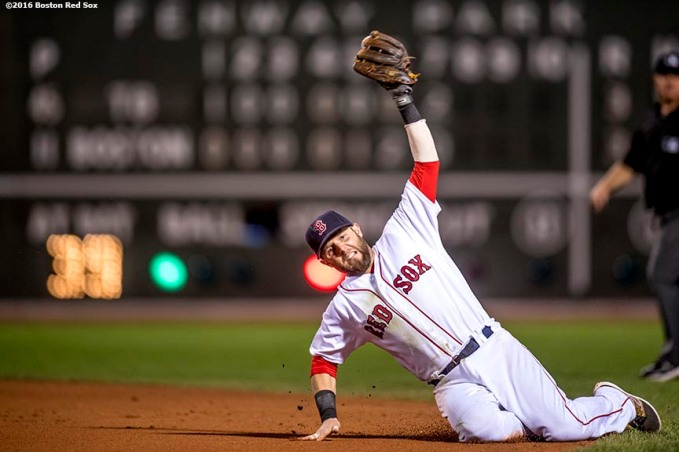 BOSTON, MA - AUGUST 30: Dustin Pedroia #15 of the Boston Red Sox fields a ground ball during the eighth inning of a game against the Tampa Bay Rays on August 30, 2016 at Fenway Park in Boston, Massachusetts. (Photo by Billie Weiss/Boston Red Sox/Getty Images) *** Local Caption *** Dustin Pedroia