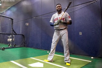 NEW YORK, NY - SEPTEMBER 29: David Ortiz #34 of the Boston Red Sox takes batting practice in the batting cage before his final game at Yankee Stadium against the New York Yankees on September 29, 2016 at Yankee Stadium in the Bronx borough of New York City. (Photo by Billie Weiss/Boston Red Sox/Getty Images) *** Local Caption *** David Ortiz