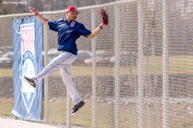 FT. MYERS, FL - FEBRUARY 18: Mookie Betts #50 of the Boston Red Sox catches a fly ball during a team workout on February 18, 2017 at Fenway South in Fort Myers, Florida . (Photo by Billie Weiss/Boston Red Sox/Getty Images) *** Local Caption *** Mookie Betts