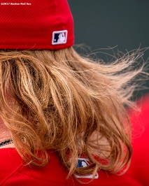 FT. MYERS, FL - FEBRUARY 21: The hair of Robbie Ross Jr. #28 of the Boston Red Sox is shown during a team workout on February 21, 2017 at Fenway South in Fort Myers, Florida . (Photo by Billie Weiss/Boston Red Sox/Getty Images) *** Local Caption *** Robbie Ross Jr.