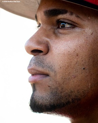 BOSTON, MA - MAY 29: Xander Bogaerts #2 of the Boston Red Sox poses for a portrait before a game against the Toronto Blue Jays on May 29, 2018 at Fenway Park in Boston, Massachusetts. (Photo by Billie Weiss/Boston Red Sox/Getty Images) *** Local Caption *** Xander Bogaerts
