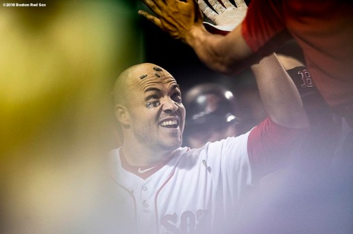 BOSTON, MA - AUGUST 2: Steve Pearce #25 of the Boston Red Sox is doused with sunflower seeds after hitting a two-run home run during the sixth inning of a game against the New York Yankees on August 2, 2018 at Fenway Park in Boston, Massachusetts. It was his third home run of the game. (Photo by Billie Weiss/Boston Red Sox/Getty Images) *** Local Caption *** Steve Pearce