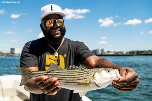 BOSTON, MA - AUGUST 2: Former designated hitter David Ortiz #34 of the Boston Red Sox poses with a fish he caught in the Boston Harbor as he rides a boat back after a visit to Camp Harbor View on August 2, 2018 in Boston, Massachusetts. (Photo by Billie Weiss/Boston Red Sox/Getty Images) *** Local Caption *** David Ortiz