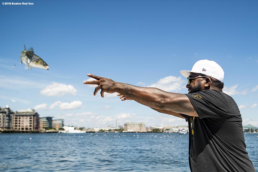BOSTON, MA - AUGUST 2: Former designated hitter David Ortiz #34 of the Boston Red Sox throws back a fish he caught in the Boston Harbor as he rides a boat back after a visit to Camp Harbor View on August 2, 2018 in Boston, Massachusetts. (Photo by Billie Weiss/Boston Red Sox/Getty Images) *** Local Caption *** David Ortiz