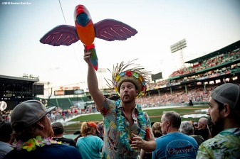 August 9, 2018, Boston, MA: A fan attends a Jimmy Buffett concert at Fenway Park in Boston, Massachusetts Thursday, August 9, 2018. (Photo by Billie Weiss/Boston Red Sox)