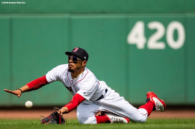 BOSTON, MA - AUGUST 19: Mookie Betts #50 of the Boston Red Sox dives as he catches a ball during the fourth inning of a game against the Tampa Bay Rays on August 19, 2018 at Fenway Park in Boston, Massachusetts. (Photo by Billie Weiss/Boston Red Sox/Getty Images) *** Local Caption *** Mookie Betts