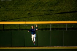 MESA, AZ - MARCH 25: Albert Almora Jr. #5 of the Chicago Cubs fields a fly ball during the first inning of a spring training game against the Boston Red Sox on March 25, 2019 at Sloan Park in Mesa, Arizona. (Photo by Billie Weiss/Boston Red Sox/Getty Images) *** Local Caption *** Albert Almora Jr.