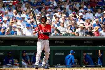 MESA, AZ - MARCH 26: Dustin Pedroia #15 of the Boston Red Sox reacts during the third inning of a spring training game against the Chicago Cubs on March 26, 2019 at Sloan Park in Mesa, Arizona. (Photo by Billie Weiss/Boston Red Sox/Getty Images) *** Local Caption *** Dustin Pedroia