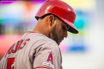 BOSTON, MA - AUGUST 9: Albert Pujols #5 of the Los Angeles Angels of Anaheim looks on during the first inning of a game against the Boston Red Sox on August 9, 2019 at Fenway Park in Boston, Massachusetts. (Photo by Billie Weiss/Boston Red Sox/Getty Images) *** Local Caption *** Albert Pujols