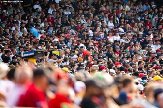 BOSTON, MA - AUGUST 10: Fans look on during a game between the Boston Red Sox and the Los Angeles Angels of Anaheim on August 10, 2019 at Fenway Park in Boston, Massachusetts. (Photo by Billie Weiss/Boston Red Sox/Getty Images) *** Local Caption ***