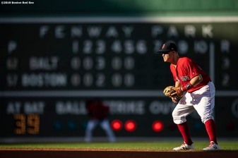 BOSTON, MA - SEPTEMBER 29: Brock Holt #12 of the Boston Red Sox looks on during the sixth inning of a game against the Baltimore Orioles on September 29, 2019 at Fenway Park in Boston, Massachusetts. (Photo by Billie Weiss/Boston Red Sox/Getty Images) *** Local Caption *** Brock Holt