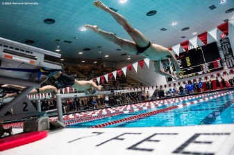 November 9, 2019, Cambridge, MA: Harvard University Swimming and Diving hosts a meet against Duke University and Texas A&M at Blodgett Pool at Harvard University in Cambridge, Massachusetts Saturday, November 9, 2019. (Photo by Billie Weiss/Harvard University)