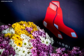 BOSTON, MA - JUNE 4: Flowers are arranged before being delivered to senior centers in the Boston area by Boston Red Sox employees as the Major League Baseball season is postponed due the coronavirus pandemic on June 4, 2020 at Fenway Park in Boston, Massachusetts. (Photo by Billie Weiss/Boston Red Sox/Getty Images) *** Local Caption ***